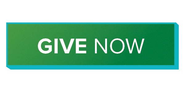 giving now give button green gradient